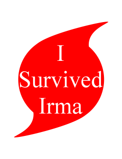 I survived Irma